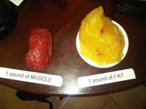 Strength Program Bondi Junction fat Loss muscle gain